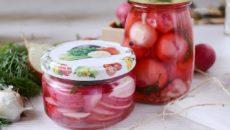 Редиска на зиму – рецепты маринования и квашения