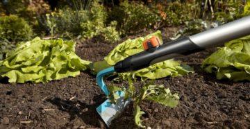 Мотыга – незаменимый инструмент при работе на грядках и газоне