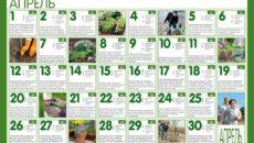 Лунный календарь на июнь 2018 – заботимся о садовых растениях