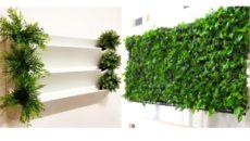 Вертикальное озеленение: конструкции арок и модулей