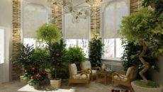 Растения для зимнего сада – как сделать правильный выбор?