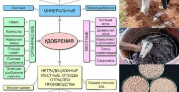 Минеральные удобрения – подробно о видах и способах внесения!