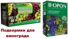 Удобрения для винограда – своевременная помощь кустам
