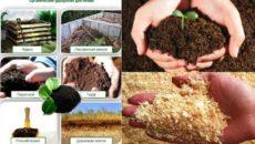 Органические удобрения – виды и технология внесения