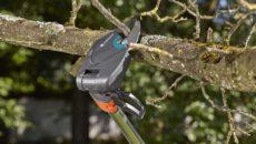 Телескопический сучкорез как незаменимый инструмент для обрезки высоких деревьев